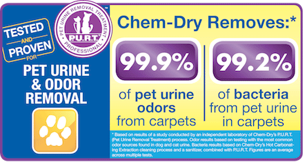 Chem-dry removes 99.9% of pet urine odors from carpets and 99.2% of bacteria from pet urine in carpets