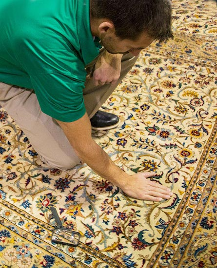 Professional Area and Oriental Rug Cleaning by Premier Chem-Dry